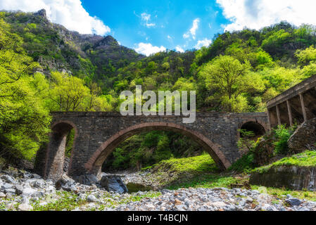 Stone bridge over small mountain river, green forest in background