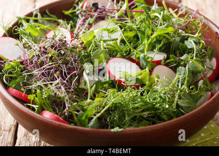 Delicious radish salad with microgreen mix close-up in a bowl on the table. horizontal Stock Photo