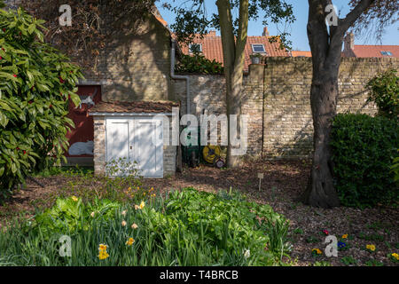 Gravelines, Nord Department, France, 26th March 2019, General View, Small Walled Garden, Spring Colours, Gardeners Corner,  © Peter Spurrier, - Stock Photo