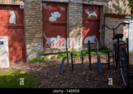 Gravelines, Nord Department, France, 26th March 2019, General View, Small Walled Garden, Spring Colours © Peter Spurrier, - Stock Photo
