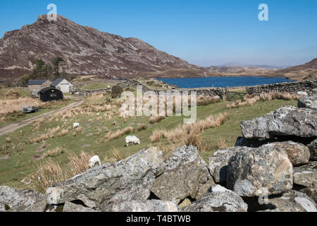 Scenic view at Cregennan Lakes, in the southern section of Snowdonia National Park, Gwynedd, Wales, UK - Stock Photo