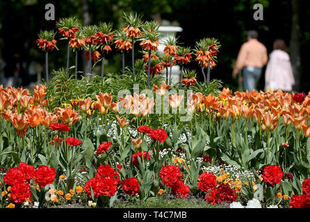 16 April 2019, North Rhine-Westphalia, Köln: Two people walk in the flora along a flower bed. Photo: Oliver Berg/dpa - Stock Photo