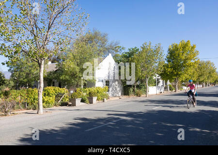 Woman cycling in tree lined Voortrekker  Street, McGregor, formerly Lady Grey, Robertson Wine Valley, Western Cape, South Africa with historic houses  - Stock Photo