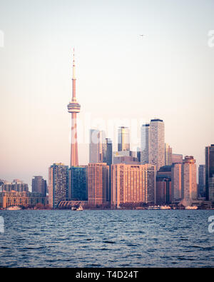 The CN Tower and spectacular skyline of Toronto, Ontario, Canada, as seen from Ward's Island (Toronto Islands) across Lake Ontario. - Stock Photo