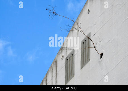 Plant sticking out through a vent cover - Stock Photo