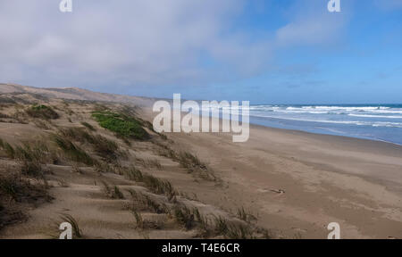 Grassy dunes on the Oystercatcher Trail. Photographed in Boggamsbaii near Mossel Bay on the Garden Route, South Africa - Stock Photo