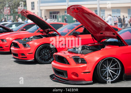 Red ford mustangs with custom aftermarket parts on display from the 2019 fabulous fords forever auto show in Anaheim California. - Stock Photo