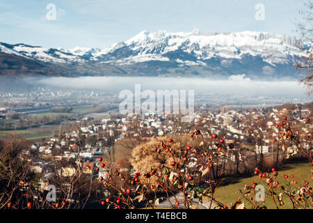 Town of Vaduz the capital of Liechtenstein, fog above the river and snow mountains of Switzerland overlooking from hilltop - Stock Photo