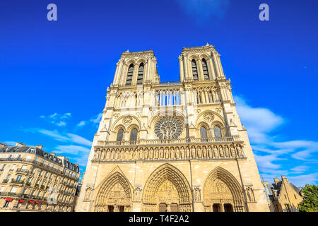 Typical iron street lamp with Notre Dame de Paris in the background, popular landmark and cathedral of the capital of France. Gothic French - Stock Photo