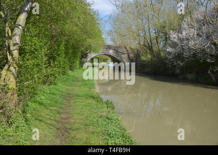 The Oxford Canal meanders through the Warwickshire countryside near the village of Wormleighton - Stock Photo