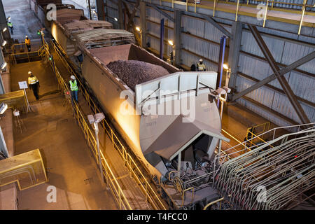 Rail & port operations for managing & transporting iron ore. Dusk inside train ore dumper 2 wagon loads of ore discharge at once prior to ship loading - Stock Photo