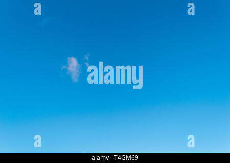 Singular fluffy cloud in a seamless gradient blue sky - Stock Photo