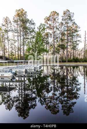 Okefenokee Swamp, Folkston, GA, USA-3/29/19: The canal at eastern entrance to the swamp, with skiffs at dock. - Stock Photo