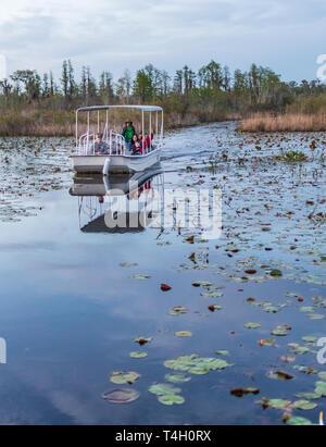 Okefenokee Swamp, Folkston, GA, USA-3/29/19:  A tourist skiff in the Okefenokee Swamp. - Stock Photo