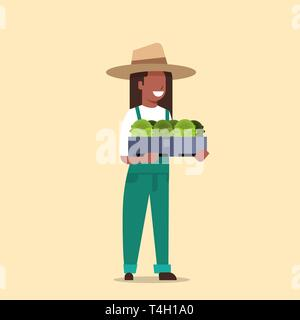 happy african american farmer holding box with green fresh lettuce cabbage woman harvesting vegetables agricultural worker in uniform eco farming - Stock Photo