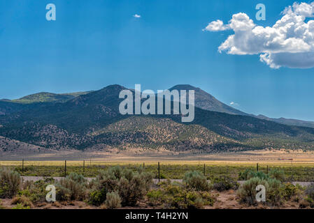 Fields of green brush and fence with tree covered mounters beyond under a blue sky with white clouds. - Stock Photo