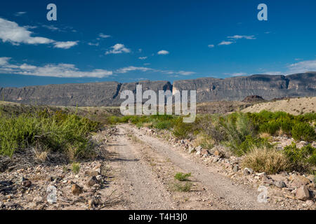 River Road, Sierra Ponce mesa in Mexico in distance, Chihuahuan Desert borderland, Big Bend National Park, Texas, USA