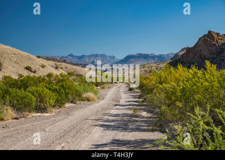 River Road, Chisos Mountains in distance, Chihuahuan Desert borderland, Big Bend National Park, Texas, USA