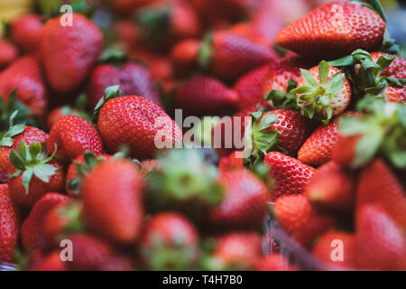 Close up of a selection of bright fresh fruit berries - Includes Strawberry, Blueberry, Raspberry, Blackberry, Red - Stock Photo