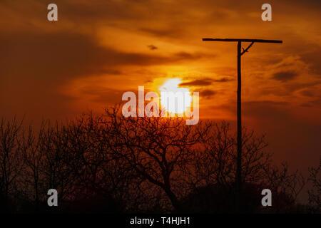 Ansitzstange für Greifvögel im Sonnenuntergang mit Silhouette von Bäumen - Stock Photo