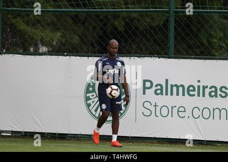 SÃO PAULO, SP - 16.04.2019: TREINO DO PALMEIRAS - of SE Palmeiras, during training, at the Football Academy. (Photo: Cesar Greco/Fotoarena) - Stock Photo