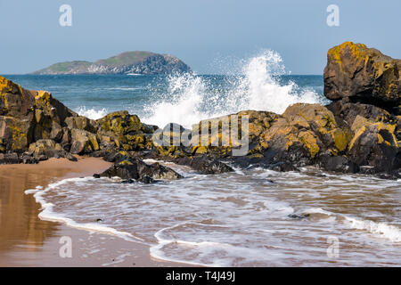 North Berwick, East Lothian, Scotland, United Kingdom, 17th April 2019. UK Weather: strong wind creates a large swell in the sea in the Forth of Forth with waves crashing along the shore at Milsey Bay and a view of Craigleith Island behind a rocky shoreline - Stock Photo