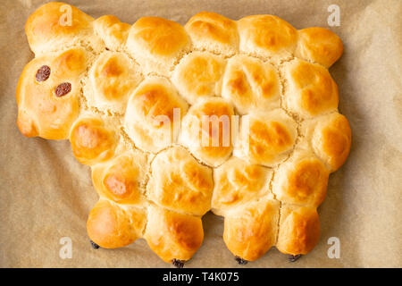 Vegan easter lamb based on yeast dough decorated with powdered sugar and raisins - Stock Photo