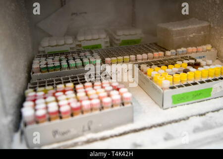 Medical samples and human tissues inside a deep freezer in a medical clinical laboratory, based at University of Bristol. PRESS ASSOCIATION Photo. Picture date: Monday April 8, 2019. Photo credit should read: Ben Birchall - Stock Photo
