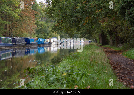 Line of canal barges moored against the bank of the River Wey Navigation and disappearing in to the distance near Byfleet and New Haw in Surrey - Stock Photo