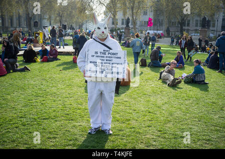 A protestor dressed as a White Rabbit on Parliament Green, Westminster for the Extinction Rebellion demonstration - Stock Photo