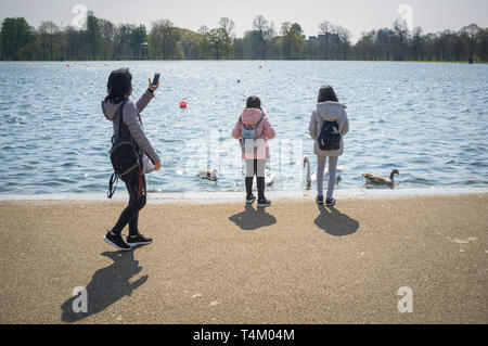 Two children feed the swans and ducks in Round Pond, Hyde Park, London as their mother films on her phone - Stock Photo