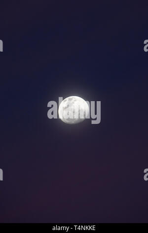Moon during the blue hour with misty nightsky seen from southern hemisphere - Stock Photo