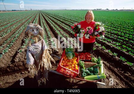 California Oxnard local produce vendor - Stock Photo