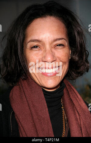 New York, USA. 19 Feb, 2007.  Producer, Stephanie Allain at the movie premiere of Black Snake Moan, New York, NY February 19, 2007, Photo by ©Steve Mack at The ÔBlack Snake MoanÕ New York City Premiere at The Chelsea West Cinemas on February 19, 2007 in New York, NY. Credit: Steve Mack/S.D. Mack Pictures/Alamy - Stock Photo