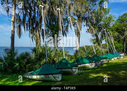 Lake Eustis, FL/United States - 03/15/19 - Sailboats lined up along the bank at a Sailing Yacht Club at a lake with Spanish Moss laden trees. - Stock Photo