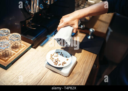 Barista hand pours coffee beans into the plate standing on scales, wooden counter on background. Professional espresso preparation by bartender in caf - Stock Photo