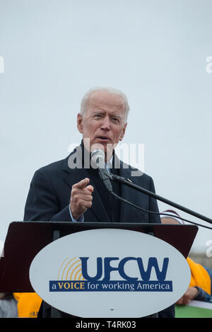Dorchester, Massachusetts, USA. 18th April, 2019.  Former U.S. vice president and possible 2020 Democratic presidential candidate, Joe Biden, speaking to over 1,000 striking grocery store workers. Credit: Chuck Nacke/Alamy Live News - Stock Photo