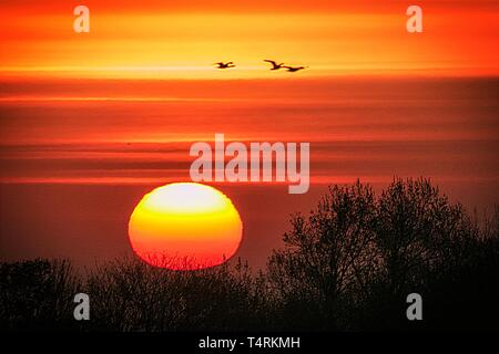 Southport, Merseyside, UK. 19th April 2019. Beautiful Sunrise. A mild start to Good Friday as the Sun breaks through some patchy low cloud and hill fog.  Temperatures are expected to reach 22ºc for a glorious sunny Easter bank holiday.  Credit: Cernan Elias/Alamy Live News - Stock Photo