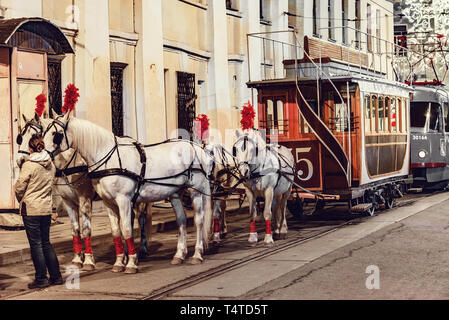 Horses and passenger vintage carriage on the town street in the historical city center before the repetition of traditional trams parade. - Stock Photo