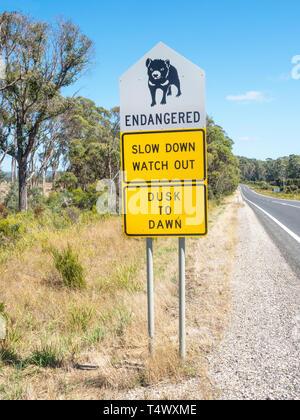 A Tasmanian Devil signboard next to the B82 road in northern Tasmania, Australia. - Stock Photo