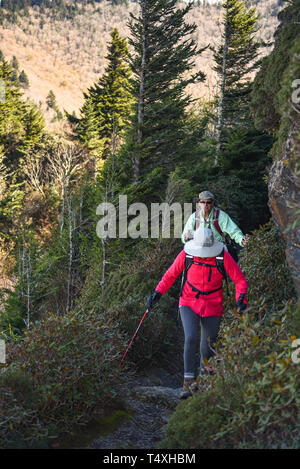 An adult fit elderly couple hiking along narrow trail at Charlies Bunion in Great Smoky Mountains National Park, near Gatlinburg, TN, USA - Stock Photo