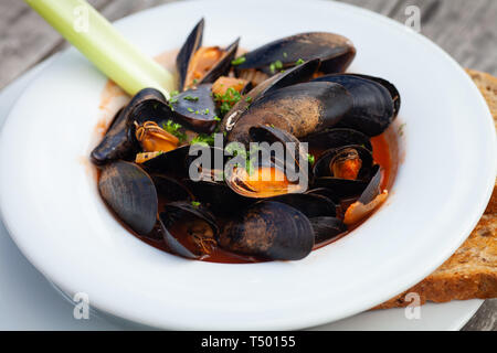 Freshly cooked mussels in a tomato and herb sauce served in a white bowl