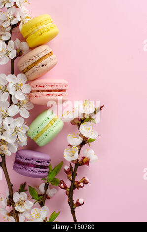 Colorful french macarons or macaroons decorated with blooming apricot flowers on pastel pink background. No diet day and Mothers Day concept. Spring t - Stock Photo