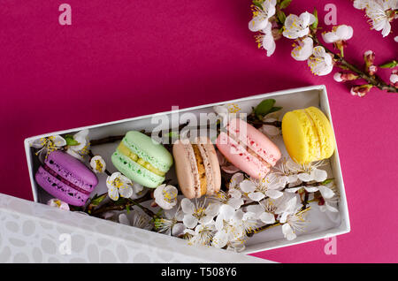 Fresh macaroons in a gift box with flowers of apricot tree on fuchsia or dark pink background. Delicious gift for Mothers Day. Greeting card concept.  - Stock Photo