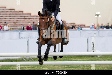 Man riding horse jumping over hurdle on show jumping competition - Stock Photo
