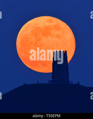 Glastonbury, Somerset, UK.  19th April 2019. UK Weather.  The April pink full moon rises up behind Glastonbury Tor in Somerset to silhouetted the landmark at the end of a hot spring day during the Easter break.  Picture Credit: Graham Hunt/Alamy Live News - Stock Photo