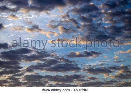 Early morning clouds catching the first hint of gold from the rising sun against a background of a deep blue sky. - Stock Photo