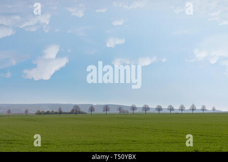 Trees on hill in Butzbach Germany - Stock Photo