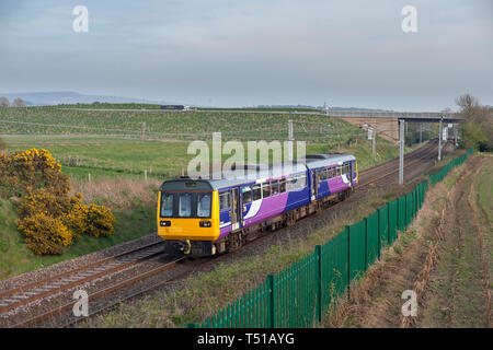 A Arriva Northern Rail class 142 pacer on the west coast main line  with a local train - Stock Photo