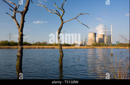 A power station in idyllic landscape with old dead trees in the foreground. - Stock Photo